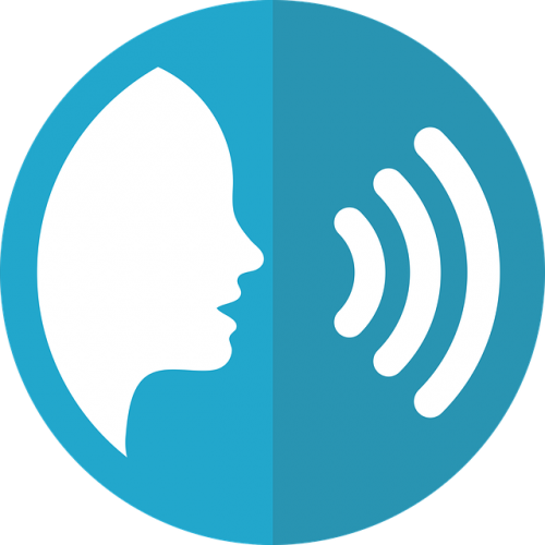 The Role Of Voice In Future Customer Experience