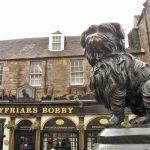 Greyfriars Bobby & Loyalty