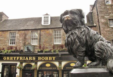 Greyfriars Bobby & Loyalty
