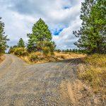 fork road