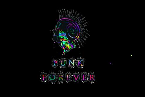 punk 892286 1920