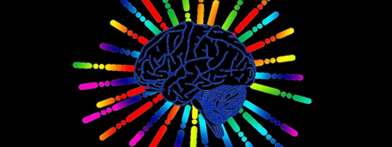 brain 3262120 1280