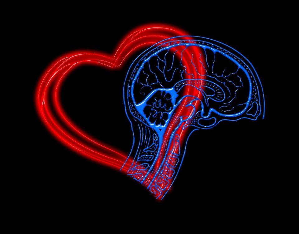 heart 4682756 1920