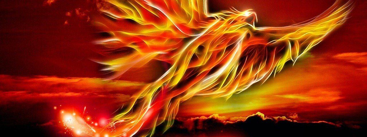 phoenix 500469 1280