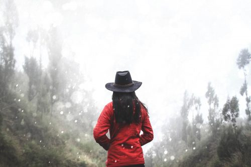 Woman in Red Shirt Standing Near Forest ZHPAvFWNj5R2 1600